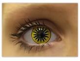 Yellow Black Tiger Eye